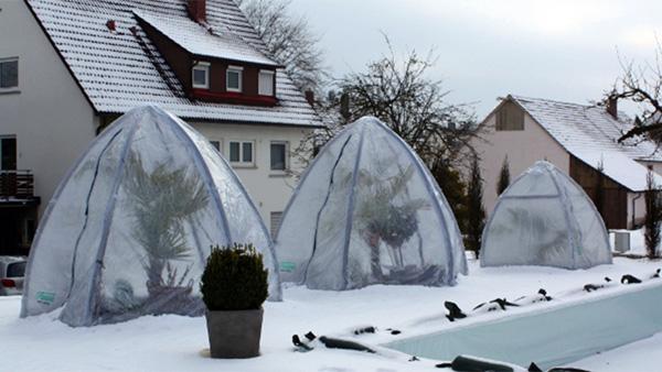 martin-haeringer-gartenbau-landschaftsbau-aktuelles--florino-winterschutz-01