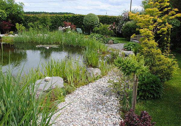 martin-haeringer-gartenbau-landschaftsbau-gartenbau-schwimmteich-der-naturnahe-schnaitsee-galerie-07