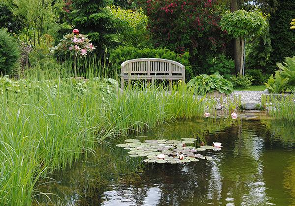 martin-haeringer-gartenbau-landschaftsbau-gartenbau-schwimmteich-der-naturnahe-schnaitsee-galerie-10
