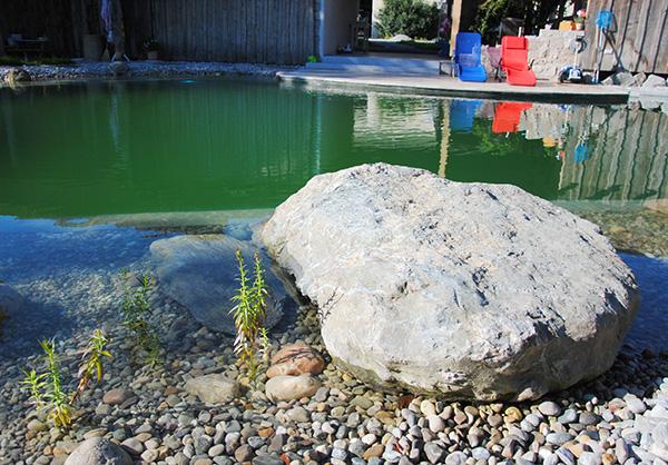 martin-haeringer-gartenbau-landschaftsbau-garten-schwimmteich-der-obstgarten-wasserburg-galerie-04