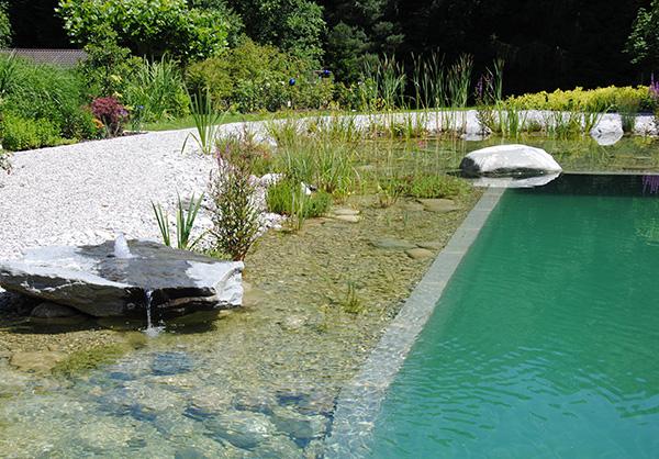 martin-haeringer-gartenbau-landschaftsbau-garten-schwimmteich-der-traumhafte-rosenheim-galerie-07