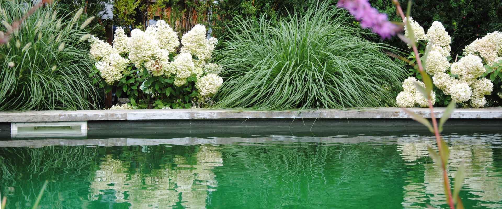 martin-haeringer-gartenbau-landschaftsbau-pool-naturpool-header-03