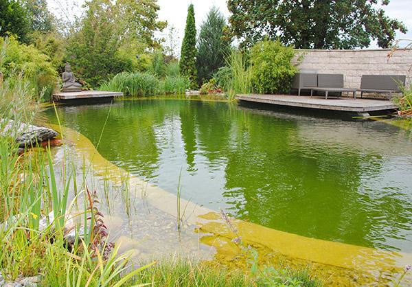 martin-haeringer-gartenbau-landschaftsbau-garten-schwimmteich-der-meditative-wasserburg-galerie-content-02
