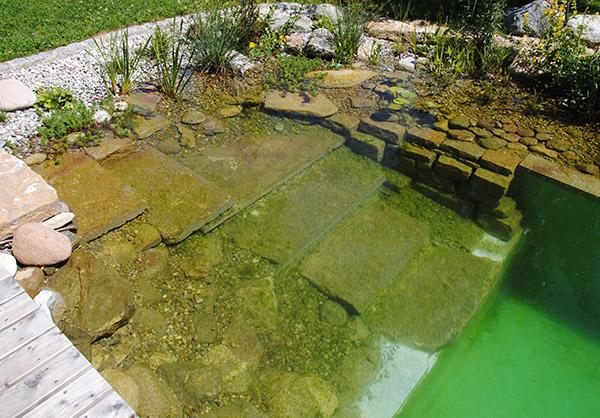 martin-haeringer-gartenbau-landschaftsbau-garten-schwimmteich-der-sanfte-amerang-galerie-content-07