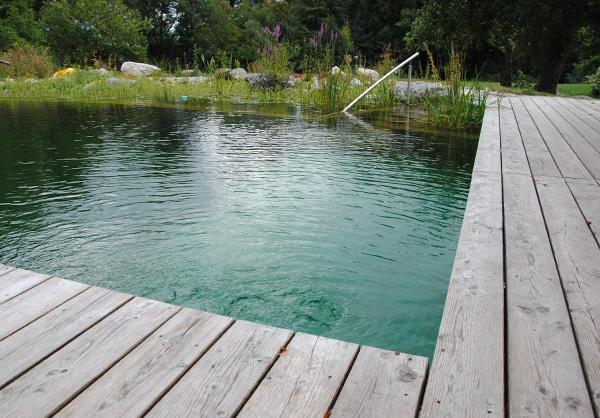 martin-haeringer-gartenbau-landschaftsbau-garten-schwimmteich-der-umbau-feldkirchen-galerie-content-04