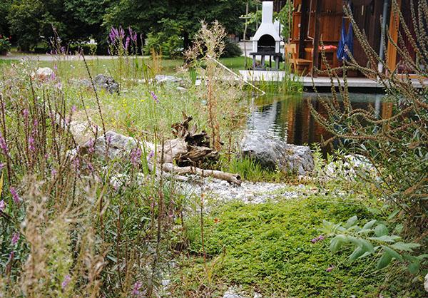 martin-haeringer-gartenbau-landschaftsbau-garten-schwimmteich-der-umbau-feldkirchen-galerie-content-07