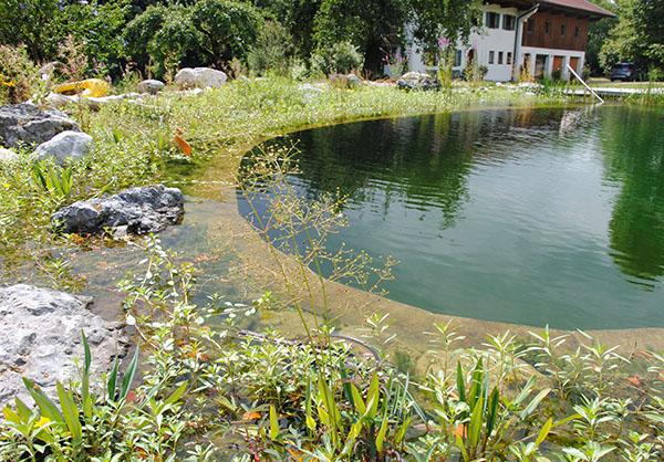 martin-haeringer-gartenbau-landschaftsbau-garten-schwimmteich-der-umbau-feldkirchen-galerie-content-08