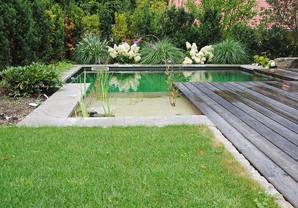 martin-haeringer-gartenbau-landschaftsbau-pool-naturpool-content-04