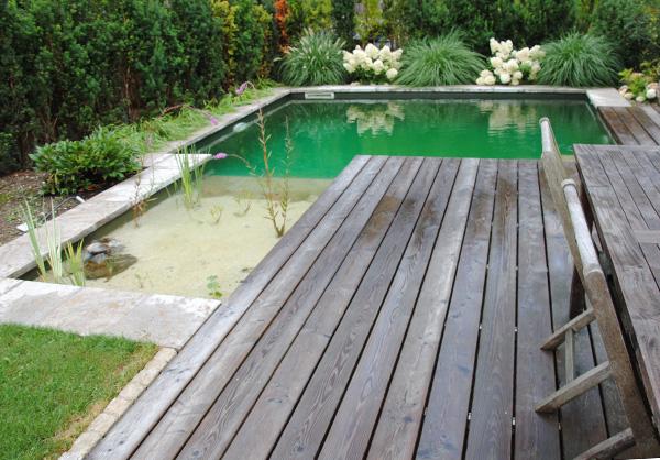 martin-haeringer-gartenbau-landschaftsbau-pool-naturpoolsysteme-content-05