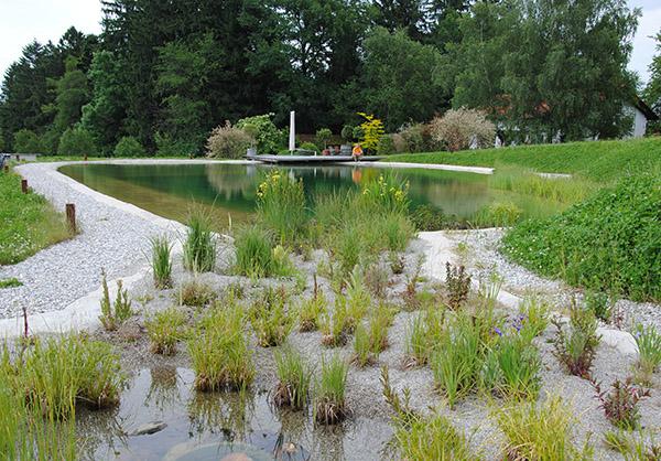 martin-haeringer-gartenbau-landschaftsbau-schwimmteich-renovierung-content-03
